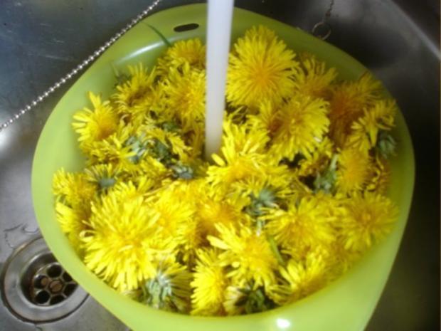 Löwenzahnblüten-Honig - Rezept - Bild Nr. 4