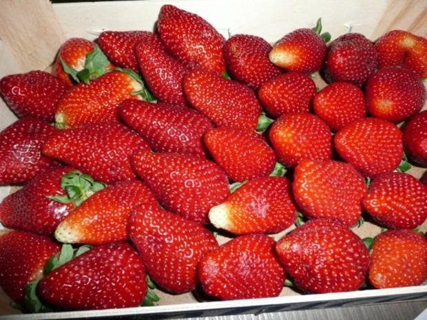 Erdbeer - Stollen - Rezept - Bild Nr. 2