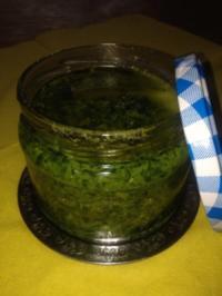 Bärlauch-Pesto - Rezept