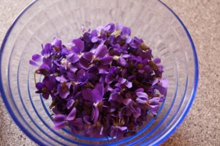 Veilchen-Thymian Sirup - Rezept