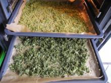 Vorräte :  Getrocknete Gemüseeinlagen - Rezept