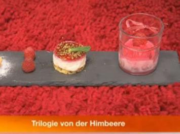 Himbeerquark-Törtchen, Himbeersorbet, Windbeutel gefüllt mit Himbeersahne - Rezept