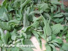Vorräte :  Frische Brennessel - getrocknete Brennessel - Rezept
