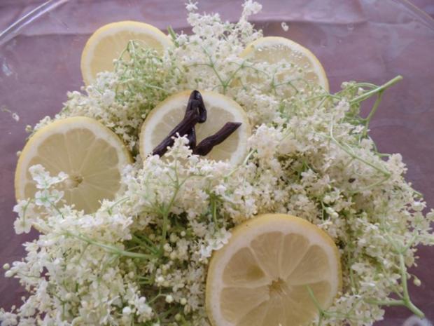 Holunderblüten-Sirup - Rezept - Bild Nr. 2