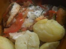 Tomaten, Käse, Zwiebel aus dem Backofen - Rezept