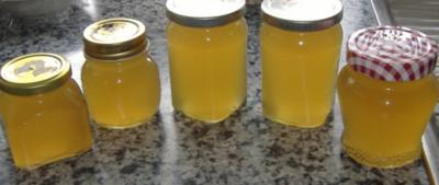 Minz-Apfel-Gelee - Rezept