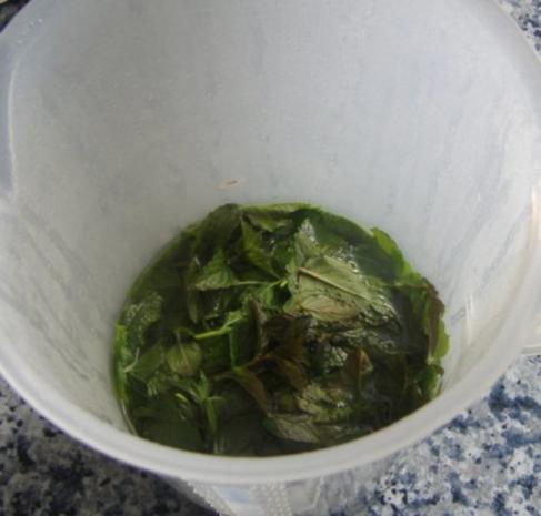 Minz-Apfel-Gelee - Rezept - Bild Nr. 2