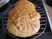 Brot & Brötchen : Sonnenblumen - Dinkel - Brot - Rezept