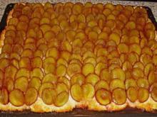 Pflaumenhefekuchen aus einem Kochbuch von 1868 1 Loth ist 15 gr. - Rezept