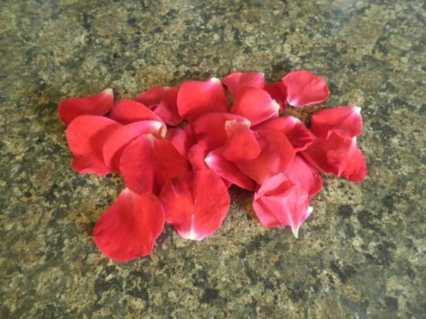 Rosen - Eis und kandierte Rosenblütenblätter ... - Rezept - Bild Nr. 14
