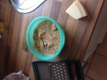 Zucchinisalat mit Speck und Parmesan - Rezept