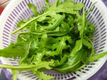 Wilde Rauke-Tomatensalat - Rezept