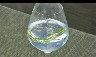 Mediterraner Gin Tonic - Rezept