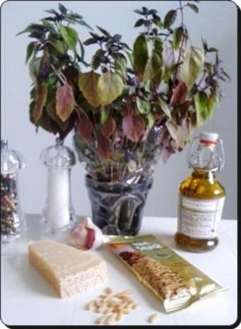 Selbstgemachtes Basilikum pesto auf Bandnudeln mit Tomaten - Rezept - Bild Nr. 4