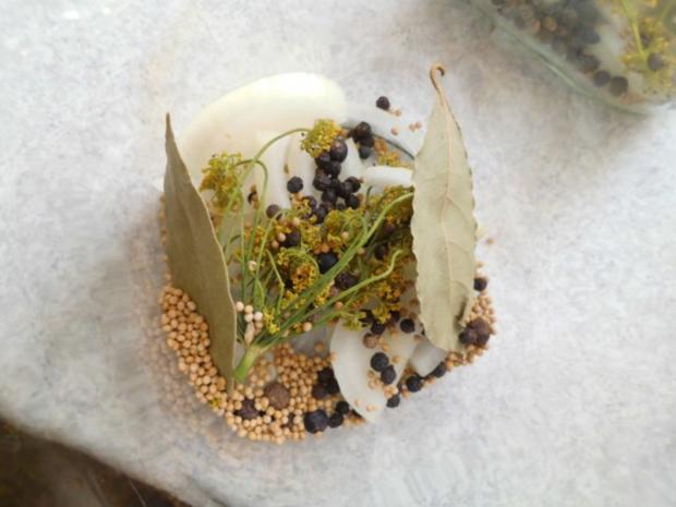 Gewürzgurken - Rezept - Bild Nr. 8