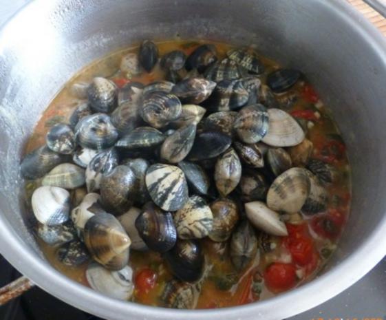Herzmuscheln in Zwiebel-Tomaten-Knoblauchsauce - Rezept - Bild Nr. 3