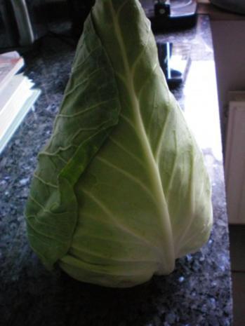 Salat: Krautsalat vom Spitzkohl - Rezept - Bild Nr. 2