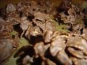 Choco Crossies - Rezept