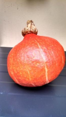Pumpkin - Pecan - Pie - Rezept - Bild Nr. 2