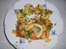 Fisch: Schollenfilets mit Käse und Eiern überbacken - Rezept