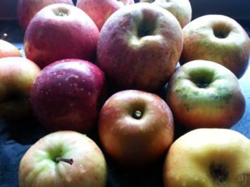 Rezept: leckeren Apfelbrei im Glas