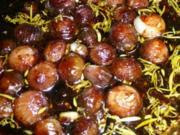 Antipasti:Biggis superleckere Balsamicozwiebeln - Rezept