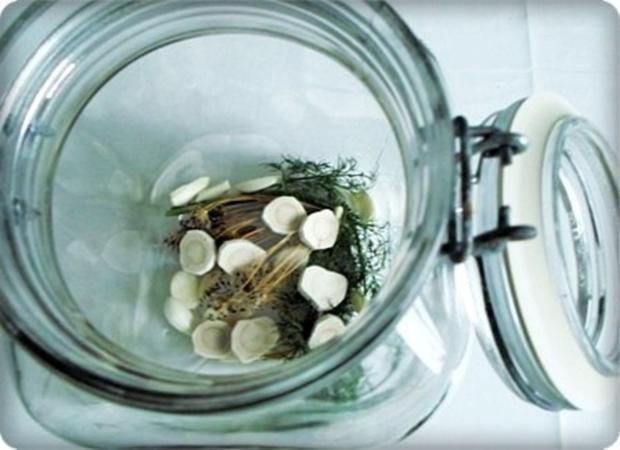 Salz-Dill Gurken nach Art des Hauses - Rezept - Bild Nr. 4
