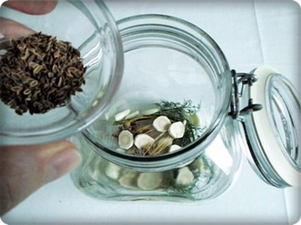 Salz-Dill Gurken nach Art des Hauses - Rezept - Bild Nr. 5