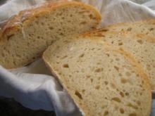Brot/Brötchen: No-Knead-Bread - ein Trend aus USA - Rezept