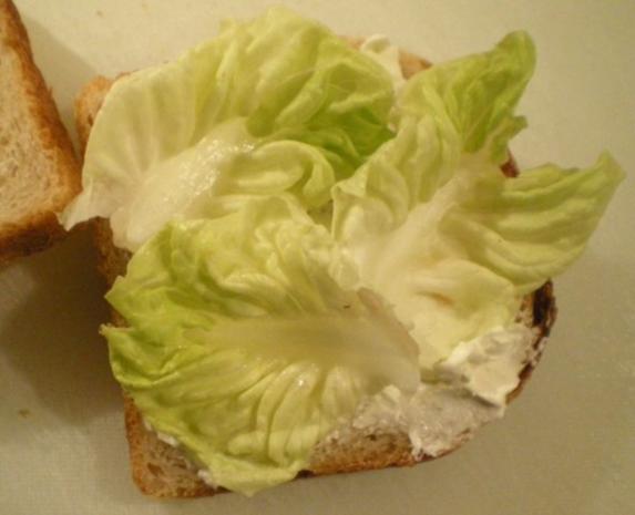 Lachs Toast mit Kapern und Zwiebel - Rezept - Bild Nr. 5