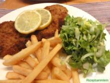 Salatbar:   ENDIVIEN (Escariol) - Rezept