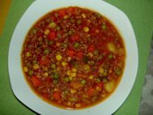 Bunter- Hackfleisch- Gemüse -Eintopf - Rezept