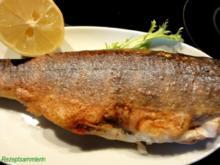 Fisch:   BACHSAIBLING knusprig gebraten - Rezept