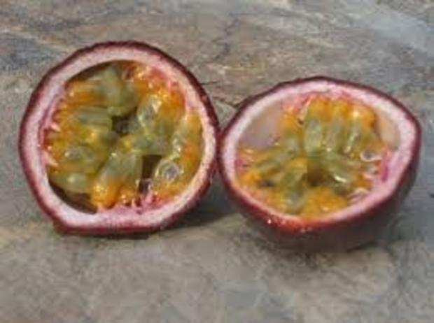 Orangen-Passionsfrucht Gelee - Rezept - Bild Nr. 2