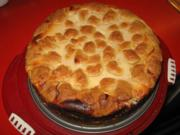 Heidelbeer - Quark - Kuchen mit Streusel - Rezept