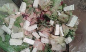 Rucola-Endivien Salat mit Kidneybohnen - Rezept