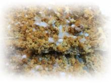 Nuss-Streuselteilchen - Rezept