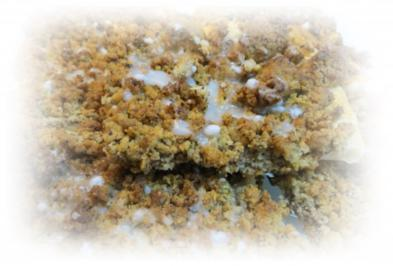 Rezept: Nuss-Streuselteilchen
