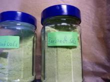 Vorrat: Bärlauchsalz - Rezept