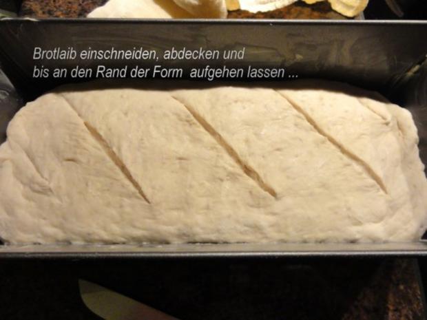 Brot:   BUTTERMILCHBROT  (750gr) - Rezept - Bild Nr. 4