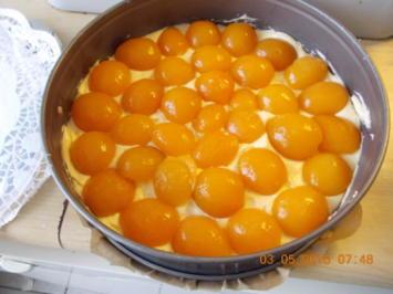 Streusel-Aprikosenkuchen - Rezept - Bild Nr. 41