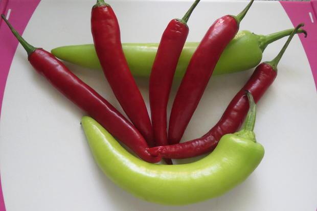 Kochen: Hackfleischbällchen in Gemüsesauce - Rezept - Bild Nr. 16