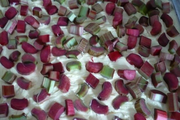 Rhabarberkuchen mit Vanille - Schmand - Guss - Rezept - Bild Nr. 25