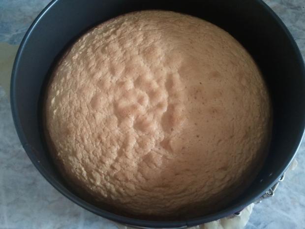 Holländer Kirsch Sahne Torte - Rezept - Bild Nr. 362