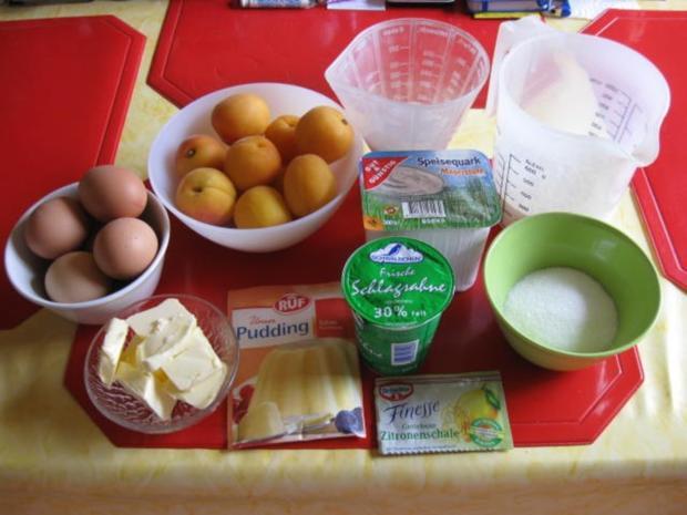 Quark Aprikosen Kuchen - Rezept - Bild Nr. 573