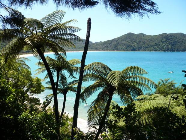 New Zealand - Roasted Kumara-Pumpkin-Special - Rezept - Bild Nr. 94