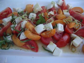 Mozzarella mit Tomaten und Marillen - Rezept - Bild Nr. 364