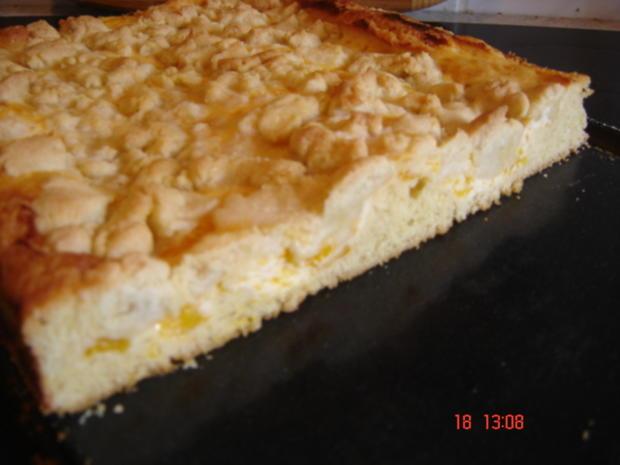 Mandarinen-Streuselkuchen - Rezept - Bild Nr. 317