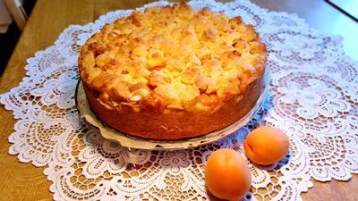 Streuselkuchen - mal fruchtig gefüllt - Rezept - Bild Nr. 367