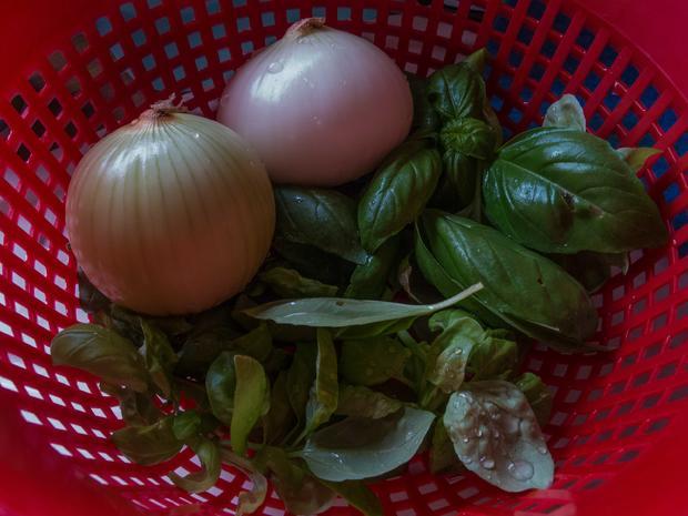 Zucchinischiffe mit Ragoutfüllung von der Pute im Tomatensoße - Rezept - Bild Nr. 638